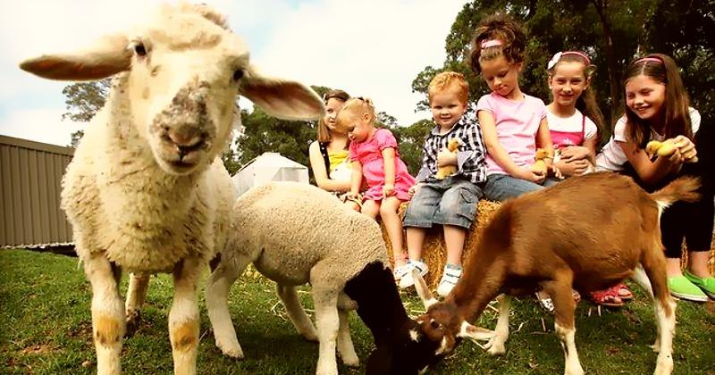 criancas na fazenda