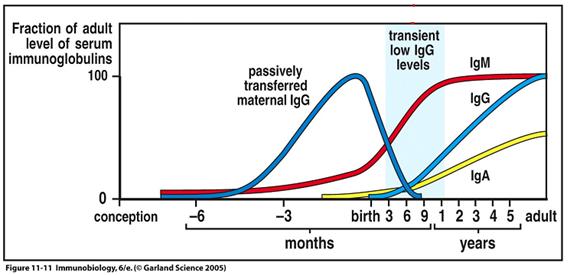 pediatria Variação dos títulos de anticorpos