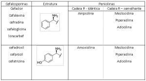 Penicilinas Cadeira Lateral R