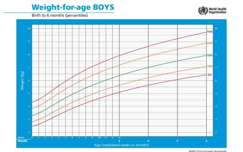 Peso meninos até 6 meses