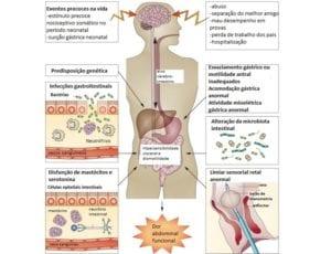 Patogenese da dor abdominal funcional