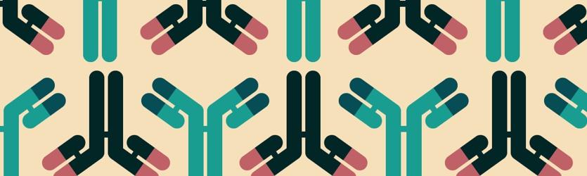 padrao anticorpos