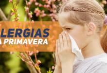 alergias na primavera